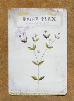 Fairy Flax represents money, sovereignty, beauty, protection and psychic ability.  It is an excellent choice of herb for connecting with the Sidhe, a noble class of fairy,  and protecting against unwanted sorcery.  Around the house it will help repel negative energy and deter harmful faery mischief.  This plant will assist in fairy communication of all types and is a good choice for an offering to the Faerie Queene. Culpeper  tells us it is under the dominion of Mars. #Fairy #Magic #Tarot