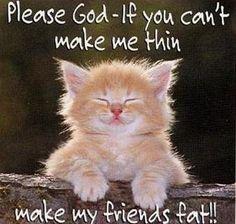kitty dream prayer...