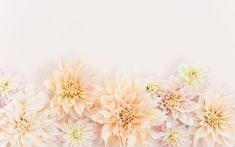 http://www.designlovefest.com/wp-content/uploads/downloads/2016/02/florals-dyt-10.jpg