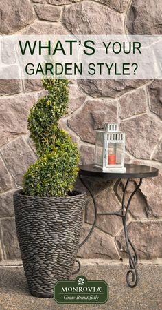 Your idea of the perfect garden is. Stone Landscaping, Garden Landscaping, Garden Lighting Trees, Lawn And Landscape, Garden Nursery, Gardening Tips, Container Gardening, Garden Inspiration, Design Inspiration