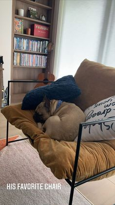 Bean Bag Chair, Couch, Sarah Jeffery, Furniture, Decorating, Home Decor, Anime, Decor, Settee