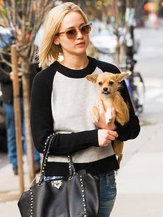 Star Tracks: Monday, November 30, 2015 | ARM CANDY | Jennifer Lawrence gives her dog Pippi a lift while arriving at her New York City hotel on Friday.