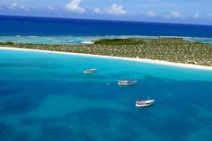 Isla La Tortuga. Do you want to enjoy this paradise? Contact us: ventas@mixtravel.com.ve