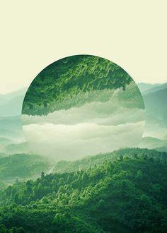 Reflected forest Poster in der Gruppe Poster / Größen und Formate / 50x70cm bei Desenio AB (2039)