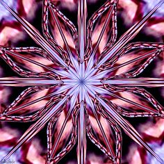 Life is short, break the rules. Forgive quickly, kiss slowly. Laugh uncontrollably and never regret anything that makes you smile. Fractal Art, Fractals, True Gif, Line Drawing, Drawing Art, Trippy Gif, Love Heart Gif, New York Museums, Money Spells