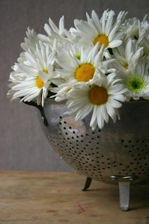 Daisy arrangement in collander. Happy Flowers, Fresh Flowers, Beautiful Flowers, Sunflowers And Daisies, Daisy Love, Belle Photo, Floral Arrangements, Flower Arrangement, Table Arrangements