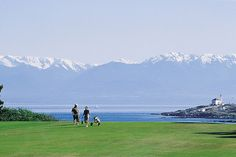 Victoria golf course and Olympic Mountains in background Victoria Vancouver Island, Olympic Mountains, Tourist Information, British Columbia, Golf Courses, Tours, Explore, Adventure, City