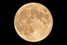 2014年9月10日(水)おはようございます。昨日に引き続き、今日もお月様の写真。雲に覆われて無理かと思った「スーパームーン」の撮影ですが、その明るさのおかげでバッチリおさえることが出来ました。D610と300mmの標準レンズでは、このへんが限界といったところ。もう100mm...400mmクラスのレンズが欲しいな~なんて思う今日この頃です。7月、8月に続き今年3回目。次回は来年9月28日に観られるとのこと(^^  それでは、今日も皆様にとって良い1日になりますように☆ 【加古川・藤井質店】http://www.pawn-fujii.jp/