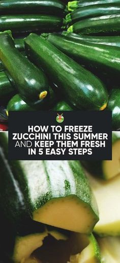 Abundant Zucchini harvest and not sure how to preserve it? Don't worry, here's the complete guide to how to freeze Zucchini, and a few easy recipes to boot. # Easy Recipes vegetables How to Freeze Zucchini and Keep Them Fresh in 5 Easy Steps Freezing Vegetables, Freezing Fruit, Frozen Vegetables, Fruits And Veggies, Freezing Broccoli, Zucchini Chips, Zucchini Fritters, Gula, Freezer Cooking