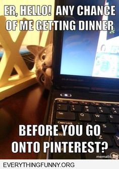 funny cat picture any chance you can feed me before you go on pinterest