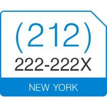 Vanity Phone Numbers For Sale   Buy Vanity Telephone Number. (212) 222 222X