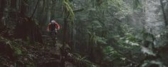 Image result for north vancouver mountain biking