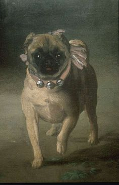 Close up of the pug in Francisco de Goya's painting