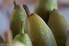 Waiheke Island pears. Waiheke Island, Pears, Fruit, Photos, Pictures, Pear