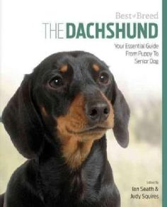 The Dachshund: Your Essential Guide from Puppy to Senior Dog (Paperback)