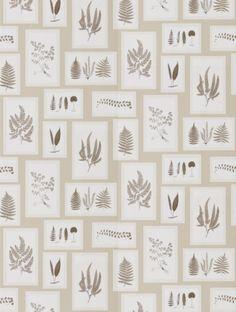 Sanderson's Fern Gallery  in linen is taken from the Woodland Walk wallpaper collection.
