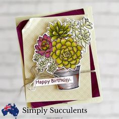 Succulent Images, Hand Stamped Cards, Stamping Up Cards, Creative Cards, Homemade Cards, I Card, Stampin Up, Birthday Cards, Succulents