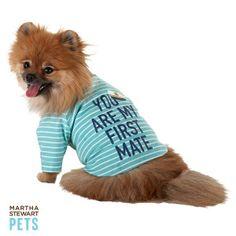"Martha Stewart Pets® ""You Are My First Mate"" Graphic Tee   T-Shirts & Tank Tops   PetSmart   Size Medium"