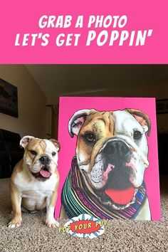 Looking for fun dog stuff for the home? :) Here's the perfect gift idea for the animal lover in your life! Our personalized pet art prints are THE coolest way to celebrate the love you have for your pup. These custom pop art prints are sure to please dogs