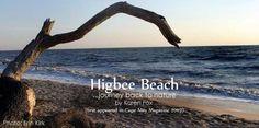 Higbee Beach Cape May NJ - Journey Back to Nature by Karen Fox