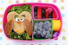 Bento-logy: Guess whoo lives you owl lunch