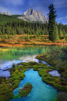 Johnstone Canyon, Banff, Alberta, Canada.