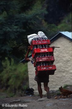 NEPAL Annapurna Porter Cola-imp