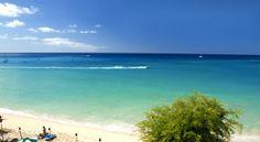 Beach at Mango Bay Resort Barbados