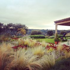 Fernando Martos landscape design . Garden in Madrid: