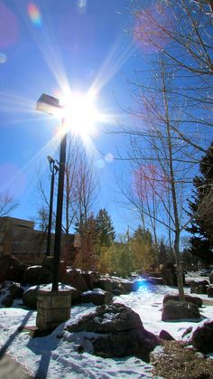 A sunny day on the University of Wyoming campus.