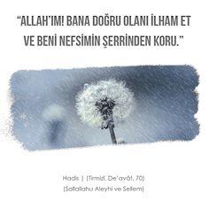 #hadis #dua