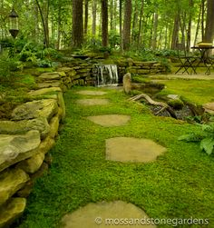 Use moss instead of loose rocks around stepping stones