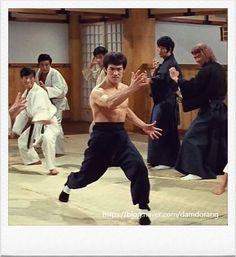 Bruce Lee Photos, Jet Li, Physical Development, Martial Artist, Celebs, Celebrities, Kung Fu, Boxing, My Friend