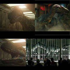 Jurassic World Fallen Kingdom, Jurassic Park World, Falling Kingdoms, Dinosaur Art, Master Chief, Saga, Monsters, Random Stuff, Lovers