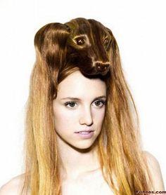 Animals look hairstyles- Puppy
