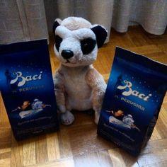 Que tus padres se vayan de viaje y te traigan #Baci #Perugina y un #suricato de #peluche... ¡No tiene precio! #inlove #softtoys #chocolate #pelucheando