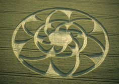 crop circle near Barbury Castle, Wiltshire
