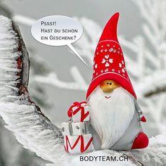 #geschenkideen #geschenke #geschenk #geschenkidee #geschenkfürmich #winterthur #bodyteam #weihnachten #weihnachtsgeschenk Winterthur, Christmas Ornaments, Holiday Decor, Home Decor, Christmas Presents, Christmas, Decoration Home, Room Decor, Christmas Jewelry