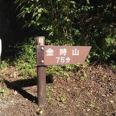 金時山 登り口
