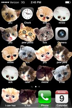 Turn someone's iPhone apps to cats. 29 Insanely Easy Pranks You Need To Play On April Fools' Day