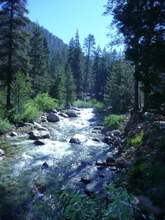 View of River from our campsite at Lodgepole Campground - Sequoia National Park