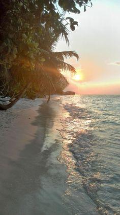 Vilamendhoo, Maldives - Sunset