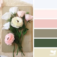 """""""today's inspiration image for { paper flora } is by @apetalunfolds ... thank you, Sue, for another breathtaking #SeedsColor image share!"""""""