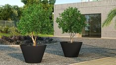 Aluminium Pflanzgefäß by ADEZZ planters & Zinc Planters, Modern Planters, Flower Planters, Planter Pots, Container Plants, Container Gardening, Concrete Bowl, Backyard Garden Design, Terracotta Pots