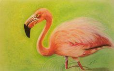 "Saatchi Art Artist: Paula Steffensen; Pastel 2013 Drawing ""Flamingo II"""