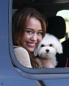 Actress/singer Miley Cyrus and her dog arriving at the Walt Disney Studios in Burbank for a meeting.