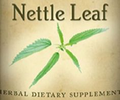 STINGING NETTLE LEAF Tincture for Allergies by NaturalHopeHerbals