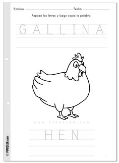 actividad Gallina / Hen  #vocabulary #animals #worksheet #preschool #KS1 #classroom #ESL #SSL #animales