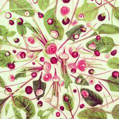 The amazing fruit and veg art of Amber Locke - Telegraph