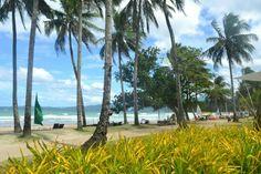 PALAWAN Palawan, Beach, Water, Travel, Outdoor, Gripe Water, Outdoors, Viajes, The Beach